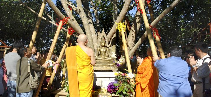 Wat Buddharangsri originally was called Thai Temple of Homestead. Then changed the name to Wat Thamarangsri and finally changed again to Wat Buddharangsri. The idea of building the temple started early in 1979. The word Wat means Temple .